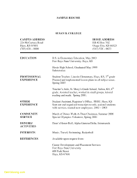 Paraprofessional Resume Template Download Resume Examples For