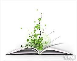 СФУ Отчет по практике Направление управление проектами и  СФУ Отчет по практике Направление