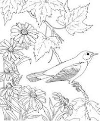 friends across america free printable coloring page maryland state bird and flower baltimore oriole black e susan