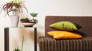 Vastu Interior Design Mesmerizing Vastu Shastra For Home Interiors 48 Best Indoor Plants For Your Home