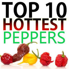 Pepper Chart 2017 Top 10 Worlds Hottest Peppers 2019 Update New Hottest Pepper