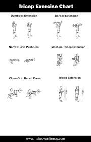 Biceps Exercise Chart 15 Memorable Gym Exercise Chart For Biceps Pdf