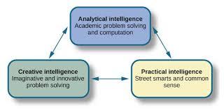 Sternberg Intelligence What Is Intelligence Tel Library