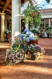 patio planter ideas patio pot plant ideas uk