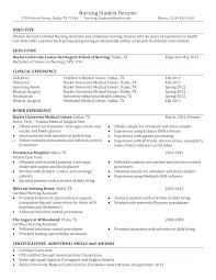 Nursing Student Resume Template Adorable Free Sample Nursing Student Resume Templates At