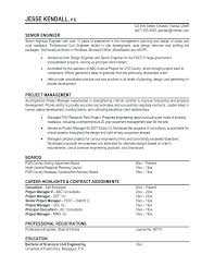 Professional Resume Formats Impressive Professional Format Of Resume Professional Resume Sample Format