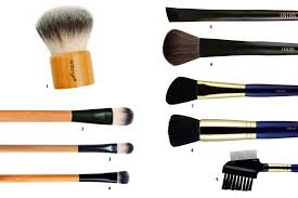 9 free makeup brushes you need to have