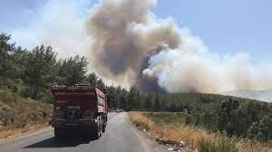 SON DAKİKA: Yangın haberleri peş peşe geldi! Bodrum, Alanya ve Didim'de de  başladı... - Son Dakika Flaş Haberler