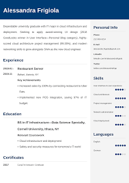 Basic Entry Level Resumes How To Write An Entry Level Resume Examples 10 Tips