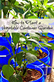 how to plant garden. how to plant a vegetable container garden