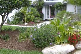 amazing south florida landscaping ideas
