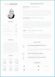 Modern Column Resume Template Ms Word Cv Template Free Download Modern Template