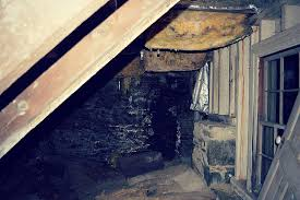 get rid of bad basement smells