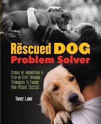 statistics problem solver cv laura man the general problem solver  the rescued dog problem solver stories of inspiration and step by the rescued dog problem solver statistics
