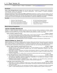 Collection Of Solutions Information Technology Consultant Resume