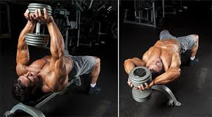 dumbbell pullover some people would contend this exercise