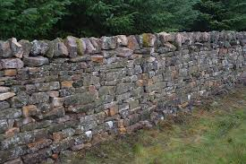 build long lasting walls 480 rs ft with best contractors
