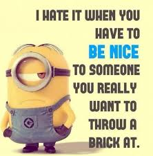 top 39 funniest minions pictures funny humor