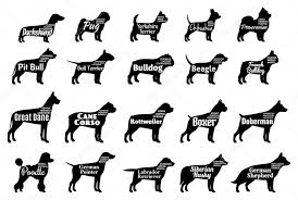 vector dog silhouettes collection isolated on white dogs breeds names stock vector 106051736