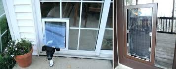 classic screen door dog door pet door for glass door dog door for sliding door door