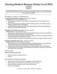 Entry Level Rn Resume Pelosleclaire Com