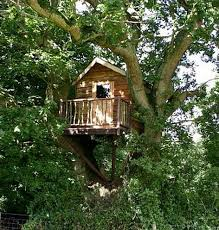 simple tree house pictures. Oak Tree Wood Simple House Pictures