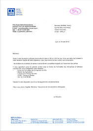Resume Cover Letter Examples Purchasing Resume Cover Letter For