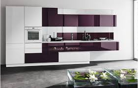 Black High Gloss Kitchen Cupboard Doors Best Products