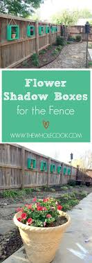 best ideas about shadow plants plants for shady flower shadow boxes for the fence