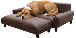 modern dog furniture big dog furniture