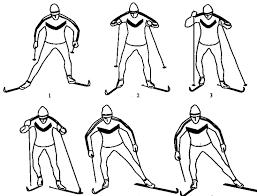 Виды ходов на лыжах для уроков по лыжной подготовке Одновременный одношажный коньковый ход