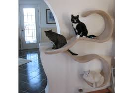wall mounted cat shelf the double wave