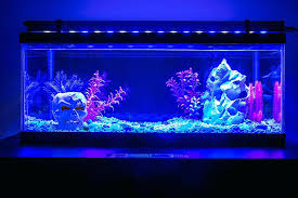 lovely best r aquarium led lighting design copernico co