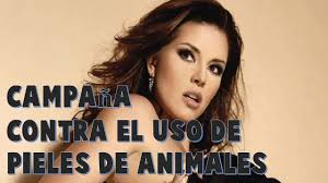 Alicia Machado se desnuda por una buena causa YouTube