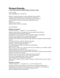 ... Fantastical Indeed Resume Template 12 Resume Now Delete Account ...
