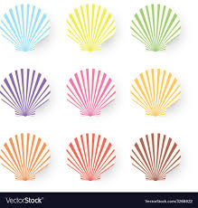 sea shells collection cute nine sea shells collection isolated on white vector image