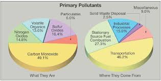 Pie Charts Explaining What The Primary Pollutants Are Pie