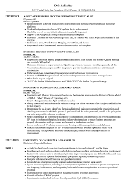Process Improvement Resume Examples Business Process Improvement Resume Samples Velvet Jobs 3