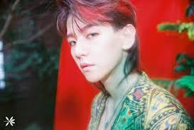 大人気曲kokobopの髪型がダサいと不評exoベッキョンの髪型をチェック
