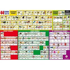 Phonics Chart 44 Sounds Wall Chart