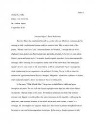 Terrance Hayess Poetic Reflection Essay