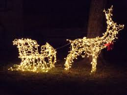 reindeer pulling sleigh lighted holiday decoration
