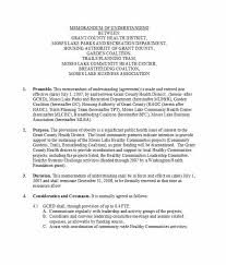 Memorandum Of Understanding Template Simple 44 Free Memorandum Of Understanding Templates [Word] Template Lab
