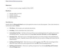 Making Resume In Word Word Professional Resume Template How To Write