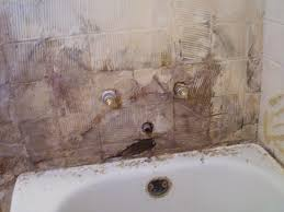 mold in sink. Perfect Mold Get Rid Of Mold In Bathroom Sink Drain Throughout Mold In Sink M