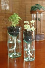 glass hanging planters hanging glass planters wholesale australia hanging  glass planters for sale hanging glass planters .
