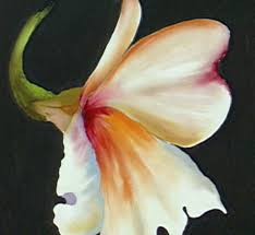 the beauty of oil painting series 1 episode 13 alstroemeria you