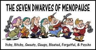 menopause   Annie Bee ~The Buzz Of A Like-Minded Woman via Relatably.com