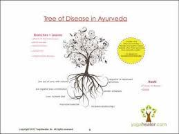 Roots of Disease - Yogahealer