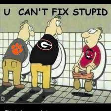 Image result for south carolina gamecock jokes